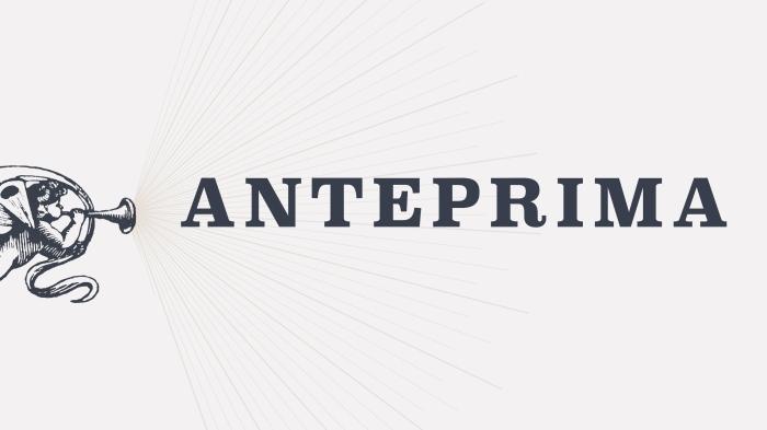 Anteprima-01